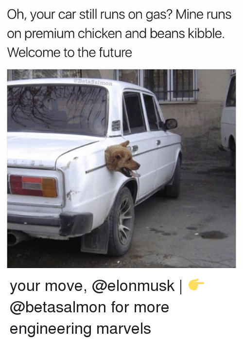 Your Moves: Oh, your car still runs on gas? Mine runs  on premium chicken and beans kibble.  Welcome to the future  Salmon your move, @elonmusk   👉 @betasalmon for more engineering marvels