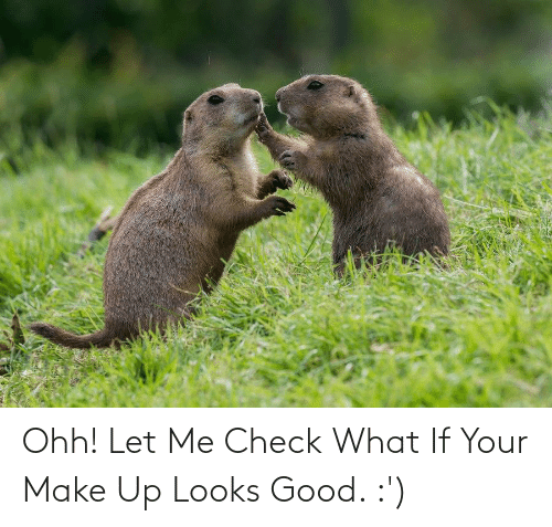 make up: Ohh! Let Me Check What If Your Make Up Looks Good. :')