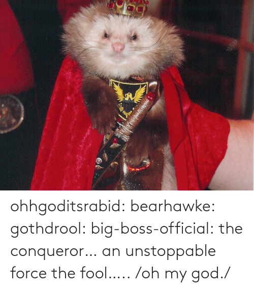 fool: ohhgoditsrabid: bearhawke:  gothdrool:  big-boss-official:  the conqueror… an unstoppable force   the fool…..                           /oh my god./