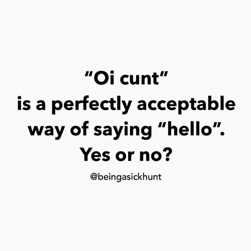 """yes or no: """"Oi cunt""""  is a perfectly acceptable  way of saying """"hello"""".  Yes or no?  @beingasickhunt"""