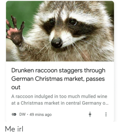 market: oictureNnwidoa/ Klime  Drunken raccoon staggers through  German Christmas market, passes  out  A raccoon indulged in too much mulled wine  at a Christmas market in central Germany o...  DW • 49 mins ago  Ow Me irl