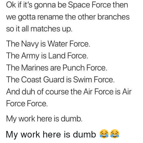 Marines: Ok if it's gonna be Space Force then  we gotta rename the other branches  so it all matches up.  The Navy is Water Force.  T he Army is Land Force  The Marines are Punch Force.  The Coast Guard is Swim Force  And duh of course the Air Force is Air  Force Force.  My work here is dumb My work here is dumb 😂😂