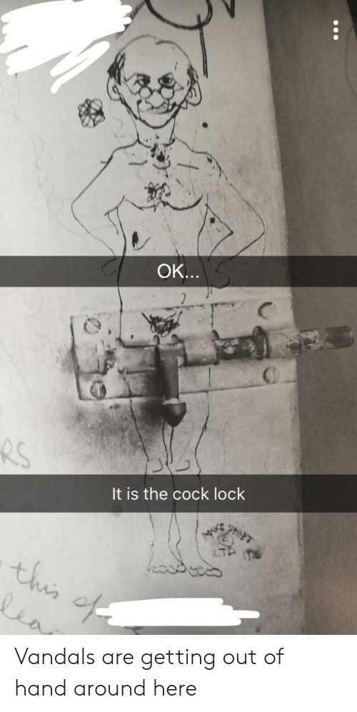 Getting Out Of Hand: OK  It is the cock lock  4 Vandals are getting out of hand around here