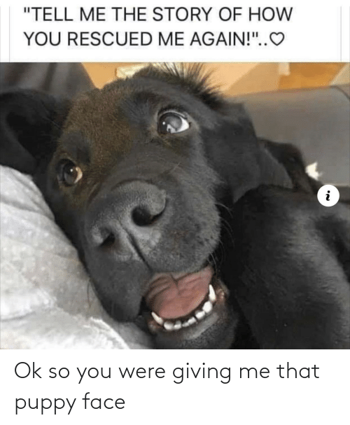 Me That: Ok so you were giving me that puppy face
