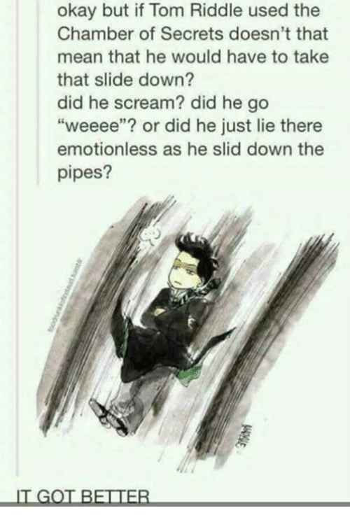 "He Scream: okay but if Tom Riddle used the  Chamber of Secrets doesn't that  mean that he would have to take  that slide down?  did he scream? did he go  ""weeee""? or did he just lie there  emotionless as he slid down the  pipes?  IT GOT BETTER"
