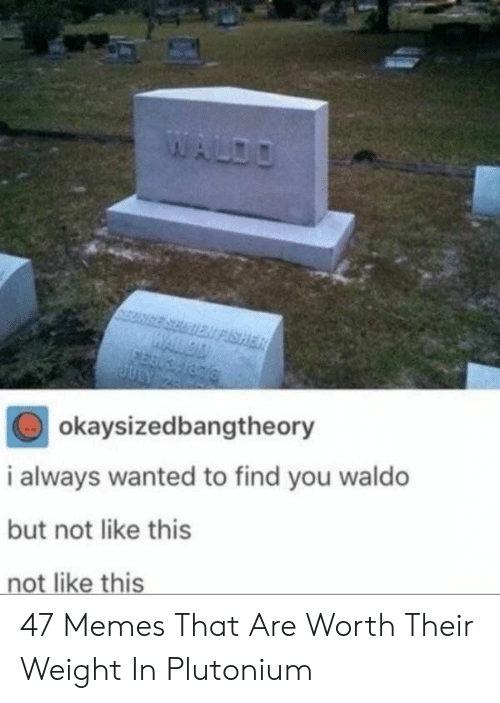 Memes, Wanted, and Plutonium: okaysizedbangtheory  i always wanted to find you waldo  but not like this  not like this 47 Memes That Are Worth Their Weight In Plutonium