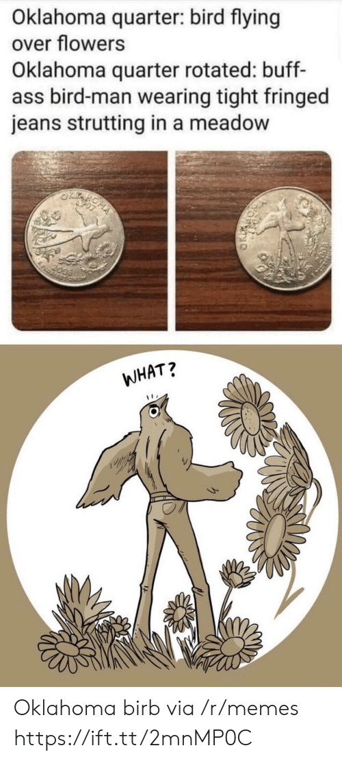 Ass, Memes, and Flowers: Oklahoma quarter: bird flying  over flowers  Oklahoma quarter rotated: buff-  ass bird-man wearing tight fringed  jeans strutting in a meadow  2099  WHAT? Oklahoma birb via /r/memes https://ift.tt/2mnMP0C