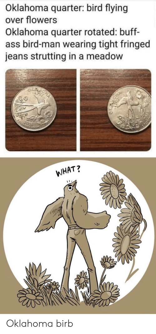 Ass, Flowers, and Oklahoma: Oklahoma quarter: bird flying  over flowers  Oklahoma quarter rotated: buff-  ass bird-man wearing tight fringed  jeans strutting in a meadow  2099  WHAT? Oklahoma birb