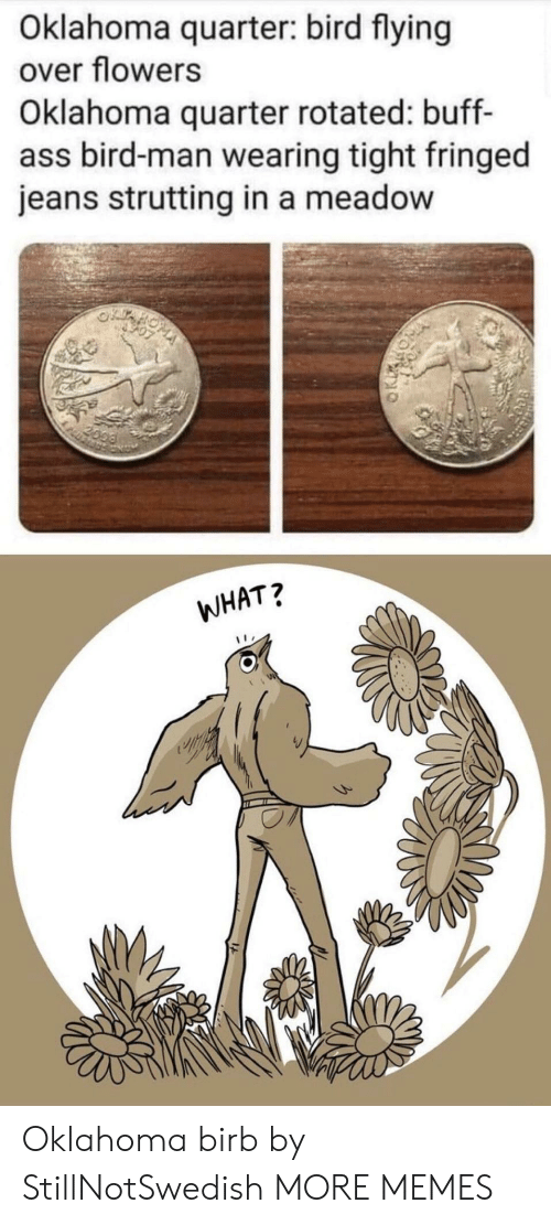 Ass, Dank, and Memes: Oklahoma quarter: bird flying  over flowers  Oklahoma quarter rotated: buff-  ass bird-man wearing tight fringed  jeans strutting in a meadow  2099  WHAT? Oklahoma birb by StillNotSwedish MORE MEMES