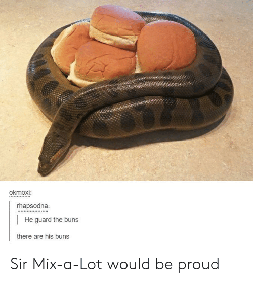 Sir Mix a Lot: okmoxi:  rhapsodna:  He guard the buns  there are his buns Sir Mix-a-Lot would be proud