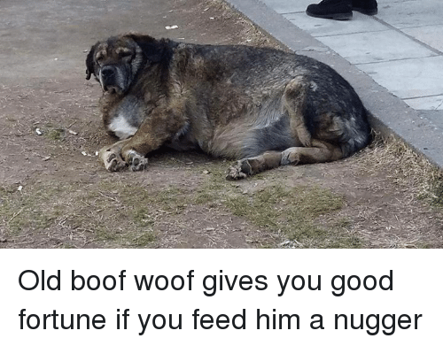 Boofing: Old boof woof gives you good fortune if you feed him a nugger