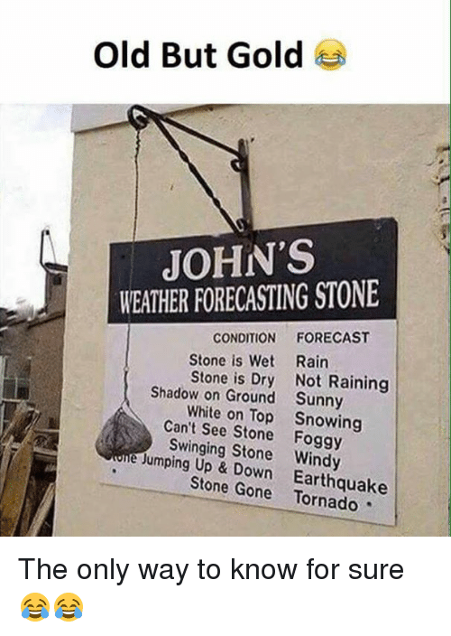 sunnies: Old But Gold  JOHN'S  WEATHER FORECASTING STONE  CONDITION  FORECAST  Stone is Wet Rain  Stone is Dry Not Raining  Shadow on Ground Sunny  White on Top Snowing  Can't See Stone Foggy  e Swinging Stone Windy  Jumping Up Down Earthquake  Stone Gone The only way to know for sure😂😂