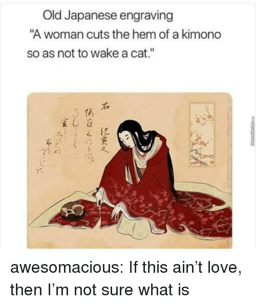 """Love, Tumblr, and Blog: Old Japanese engraving  A woman cuts the hem of a kimond  so as not to wake a cat.""""  呈し  がら awesomacious:  If this ain't love, then I'm not sure what is"""