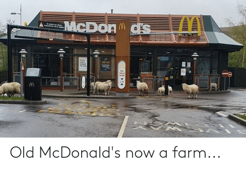 McDonalds, Old, and Now: Old McDonald's now a farm...