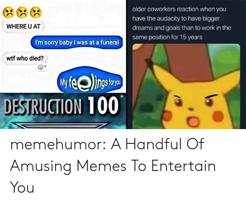 entertain: older coworkers reaction when you  have the audacity to have bigger  WHERE U AT  dreams and goals than to work in the  same position for 15 years  I'm sorry baby I was at a funeral  wtf who died?  DESTRUCTION 100 memehumor:  A Handful Of Amusing Memes To Entertain You