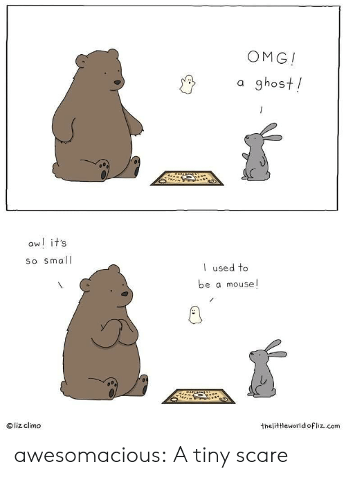 Mouse: OMG!  a ghost!  aw! it's  So small  used to  be a mouse!  liz climo  thelittleworld ofliz.com awesomacious:  A tiny scare