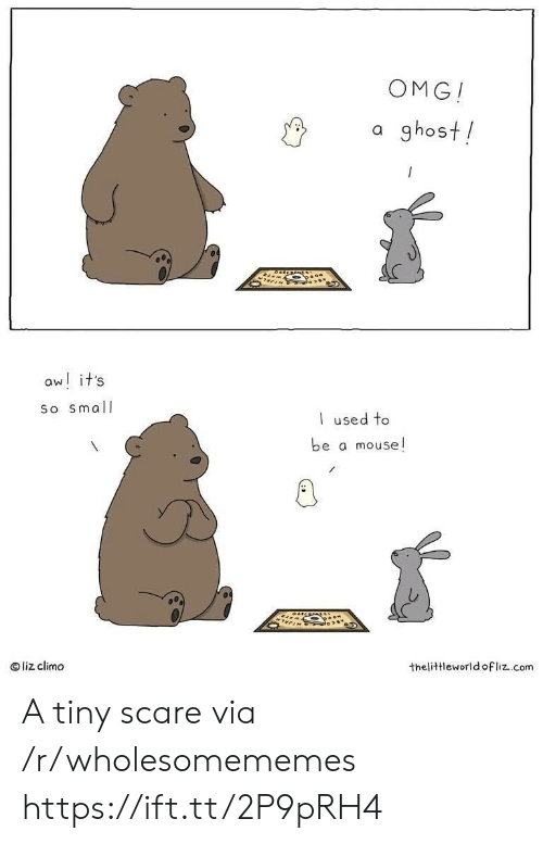 Scare: OMG!  a ghost!  aw! it's  So small  used to  be a mouse!  liz climo  thelittleworld ofliz.com A tiny scare via /r/wholesomememes https://ift.tt/2P9pRH4