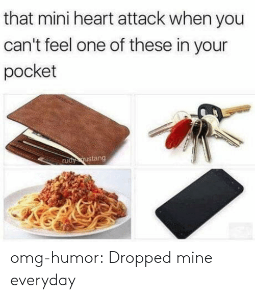 Dropped: omg-humor:  Dropped mine everyday