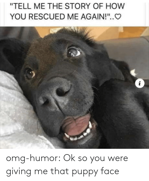 Giving: omg-humor:  Ok so you were giving me that puppy face