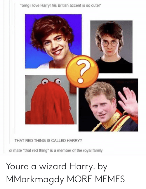 """Royal family: omg i love Harry! his British accent is so cute!  THAT RED THING IS CALLED HARRY?  ol mate """"that red thing"""" is a member of the royal family Youre a wizard Harry. by MMarkmagdy MORE MEMES"""