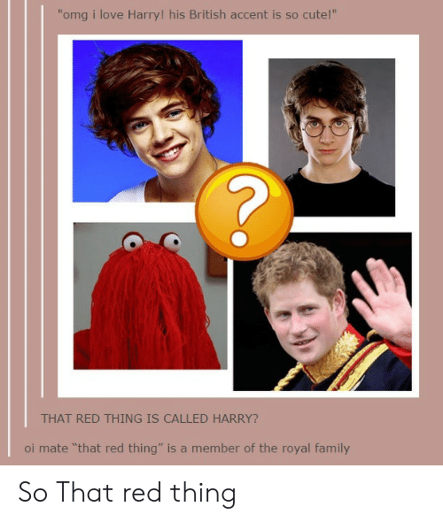 """oi mate: """"omg i love Harry! his British accent is so cute!""""  11  THAT RED THING IS CALLED HARRY?  oi mate """"that red thing"""" is a member of the royal family So That red thing"""