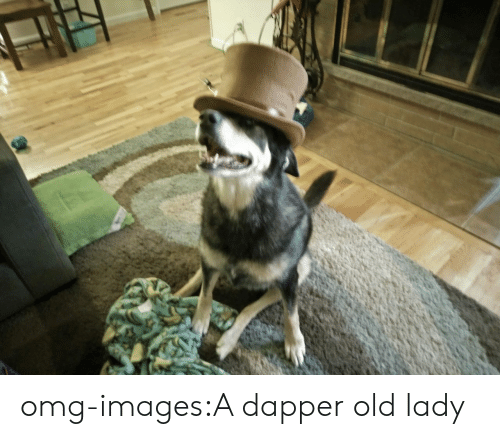 Omg, Tumblr, and Blog: omg-images:A dapper old lady