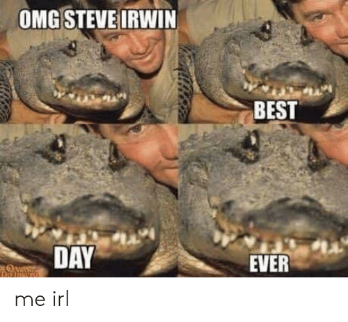 Omg, Steve Irwin, and Best: OMG STEVE IRWIN  BEST  1A  DAY  EVER me irl