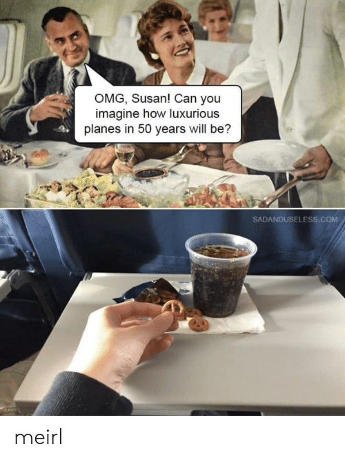 Omg, MeIRL, and How: OMG, Susan! Can you  imagine how luxurious  planes in 50 years will be?  SADANDUSELESS.COM meirl