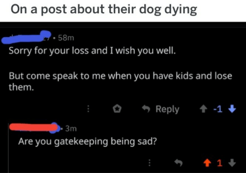 Being Sad: On a post about their dog dying  58m  Sorry for your loss and I wish you well.  But come speak to me when you have kids and lose  them.  Reply  -1  3m  Are you gatekeeping being sad?