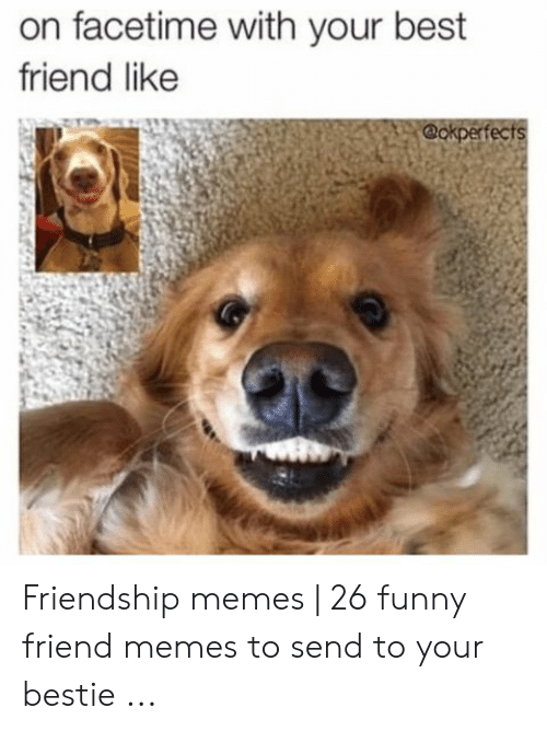 Best Friend, Facetime, and Funny: on facetime with your best  friend like  @okperfects Friendship memes | 26 funny friend memes to send to your bestie ...