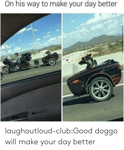 Good Doggo: On his way to make your day better laughoutloud-club:Good doggo will make your day better