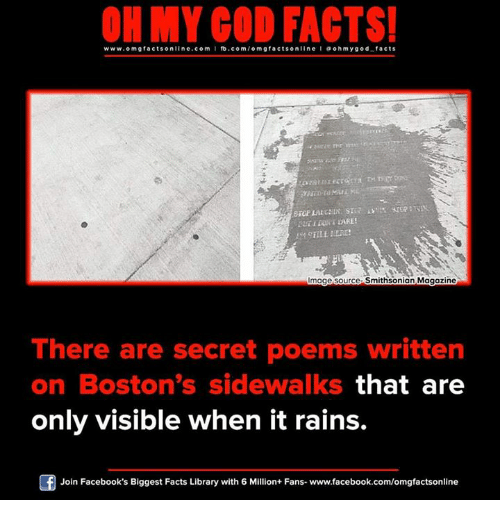 Memes, Boston, and Library: ON MY GOD FACTS!  www.omg facts online.com I fb.com/o m g facts online I a oh y god facts  mage source Smithsonian Magazine  There are secret poems written  on Boston's sidewalks  that are  only visible when it rains.  Of Join Facebook's Biggest Facts Library with 6 Million+ Fans- www.facebook.com/omgfactsonline