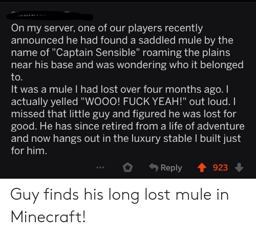 """Life, Minecraft, and Yeah: On my server, one of our players recently  announced he had found a saddled mule by the  name of """"Captain Sensible"""" roaming the plains  near his base and was wondering who it belonged  to.  It was a mule I had lost over four months ago. I  actually yelled """"WOOO! FUCK YEAH!"""" out loud.  missed that little guy and figured he was lost for  good. He has since retired from a life of adventure  and now hangs out in the luxury stable I built just  for him.  Reply  923 Guy finds his long lost mule in Minecraft!"""