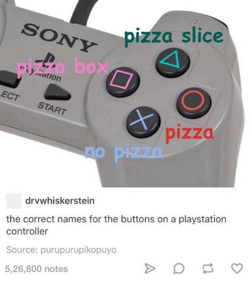 cation: ON pizza slice  cation  ECT  START  drvwhiskerstein  the correct names for the buttons on a playstation  controller  Source: purupurupikopuyo  5,26,800 notes