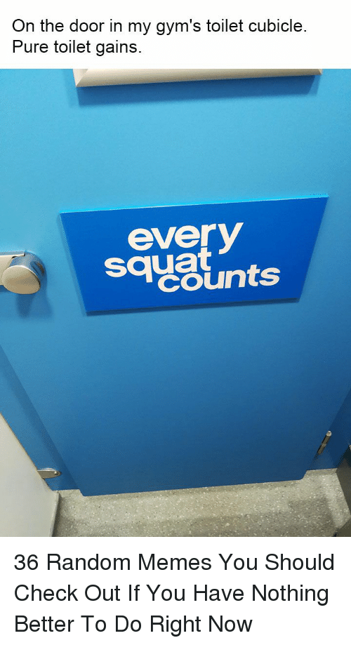 Memes, Squat, and Random: On the door in my gym's toilet cubicle  Pure toilet gains  sayslnts  everV  squat 36 Random Memes You Should Check Out If You Have Nothing Better To Do Right Now