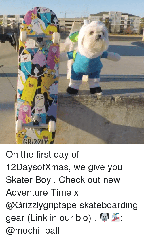 mochi: On the first day of 12DaysofXmas, we give you Skater Boy . Check out new Adventure Time x @Grizzlygriptape skateboarding gear (Link in our bio) . 🐶🏂: @mochi_ball