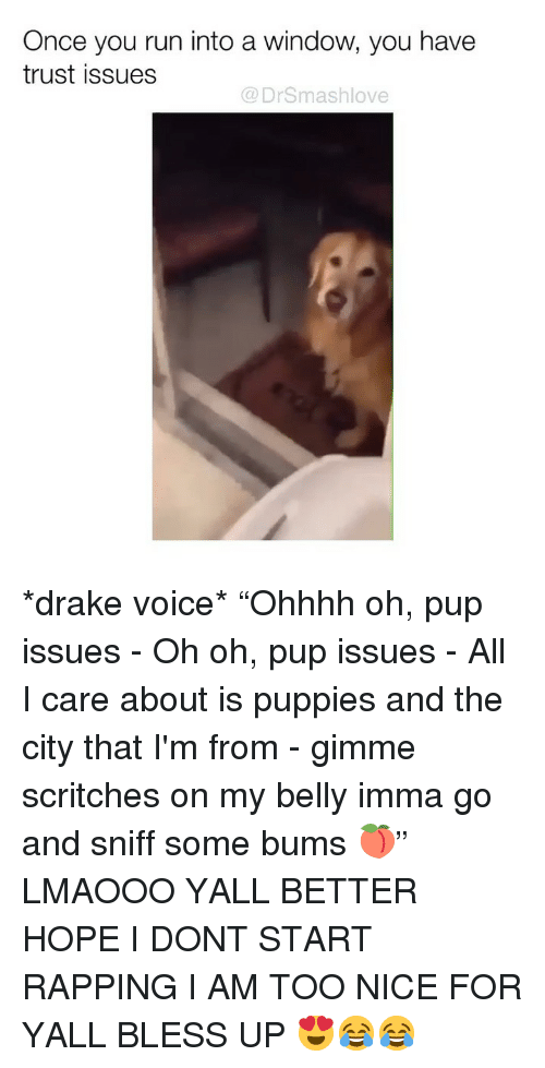 "Bless Up, Drake, and Memes: Once you run into a window, you have  trust issues  @ DrSmashlove *drake voice* ""Ohhhh oh, pup issues - Oh oh, pup issues - All I care about is puppies and the city that I'm from - gimme scritches on my belly imma go and sniff some bums 🍑"" LMAOOO YALL BETTER HOPE I DONT START RAPPING I AM TOO NICE FOR YALL BLESS UP 😍😂😂"