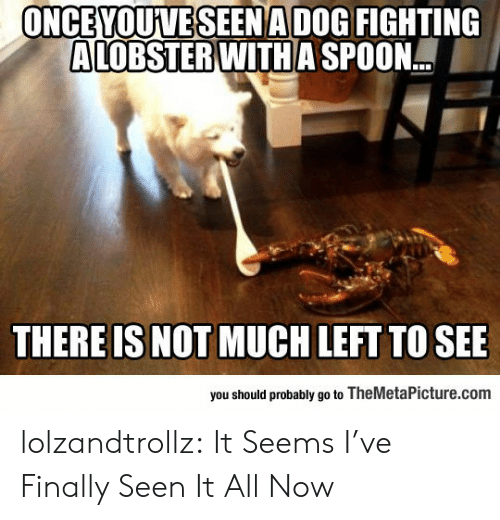 Seen It: ONCEYOUVESEENADOG FIGHTING  ALOBSTER WITH A SPOON.  THERE IS NOT MUCH LEFT TO SEE  you should probably go to TheMetaPicture.com lolzandtrollz:  It Seems I've Finally Seen It All Now