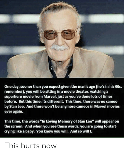 """cameo: One day, sooner than you expect given the man's age (he's in his 90s,  remember), you will be sitting in a movie theater, watching a  superhero movie from Marvel, just as you've done lots of times  before. But this time, its different. This time, there was no cameo  by Stan Lee. And there won't be anymore cameos in Marvel movies  ever again.  This time, the words """"In Loving Memory of Stan Lee"""" will appear on  the screen. And when you see these words, you are going to start  crying like a baby. You know you will. And so will. This hurts now"""