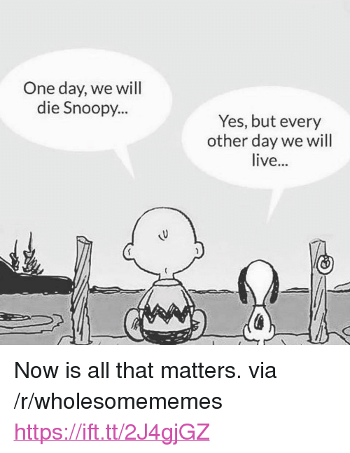 """Snoopy: One day, we will  die Snoopy...  Yes, but every  other day we will  live... <p>Now is all that matters. via /r/wholesomememes <a href=""""https://ift.tt/2J4gjGZ"""">https://ift.tt/2J4gjGZ</a></p>"""