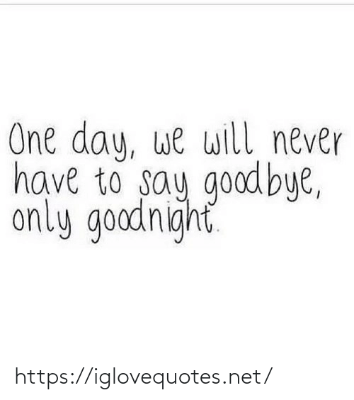 We Will: One day, we will never  have to say goodbye,  only goodnight https://iglovequotes.net/