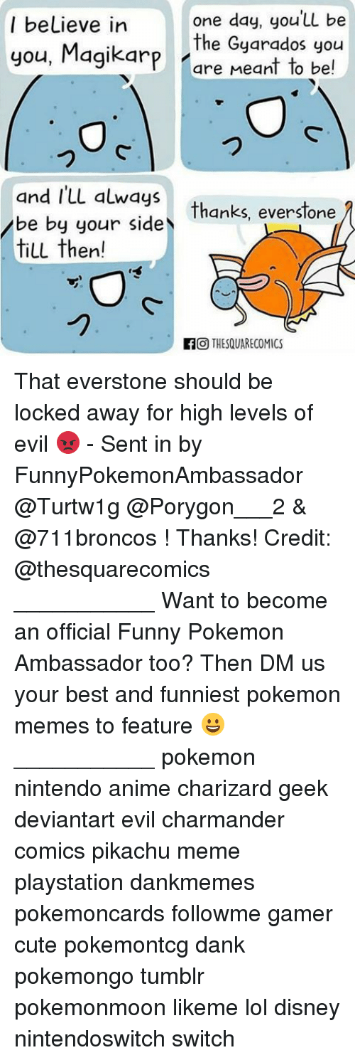 Anime, Charmander, and Cute: one day, you Ll be  the Gyarados you  Pare Meant to be!  I beLieve in  you, Magikarp  つ  thanks, everstone 1  and ILL always  be by your side  till then!  Thanks, everslone  -1  fTHESQUARECOMICS That everstone should be locked away for high levels of evil 😡 - Sent in by FunnyPokemonAmbassador @Turtw1g @Porygon___2 & @711broncos ! Thanks! Credit: @thesquarecomics ___________ Want to become an official Funny Pokemon Ambassador too? Then DM us your best and funniest pokemon memes to feature 😀 ___________ pokemon nintendo anime charizard geek deviantart evil charmander comics pikachu meme playstation dankmemes pokemoncards followme gamer cute pokemontcg dank pokemongo tumblr pokemonmoon likeme lol disney nintendoswitch switch