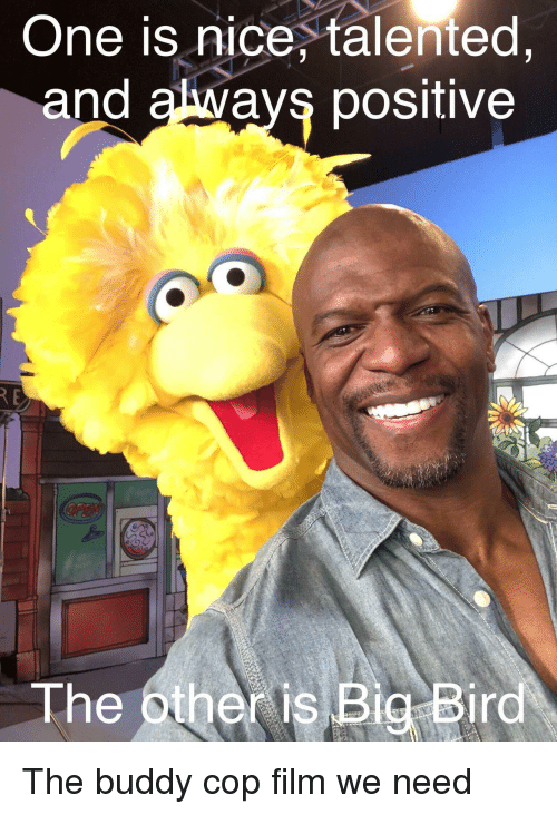 Big Bird, Film, and Nice: One is nice, talented  and always positive  The other is Big Bird The buddy cop film we need