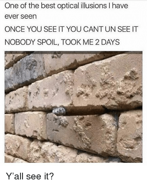 Funny, Best, and Once: One of the best optical illusions I have  ever seen  ONCE YOU SEE IT YOU CANT UN SEE IT  NOBODY SPOIL, TOOK ME 2 DAYS Y'all see it?