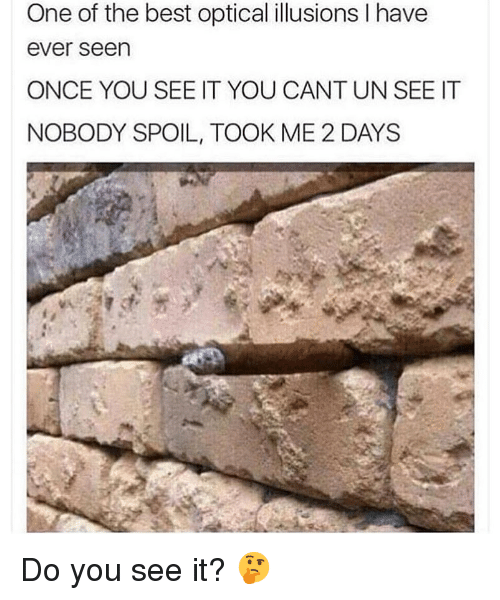 Memes, Best, and 🤖: One of the best optical illusions I have  ever seen  ONCE YOU SEE IT YOU CANT UN SEE IT  NOBODY SPOIL, TOOK ME 2 DAYS Do you see it? 🤔