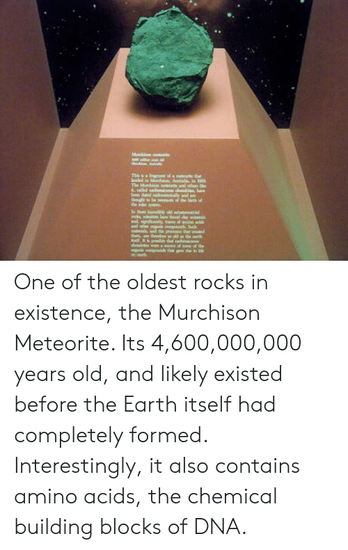 meteorite: One of the oldest rocks in existence, the Murchison Meteorite. Its 4,600,000,000 years old, and likely existed before the Earth itself had completely formed. Interestingly, it also contains amino acids, the chemical building blocks of DNA.