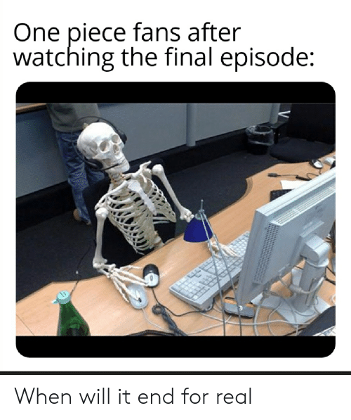 One Piece Fans After Watching the Final Episode When Will It