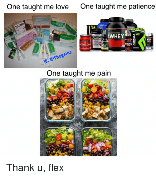 Flexing, Love, and Memes: One taught me love  One taught me patience  Winstral  AI  IZE  GOLD STANDARD  -ti  WHEy@보  Turanabotic  TCN  OPTI  MEN  10: othegainz  One taught me pain Thank u, flex