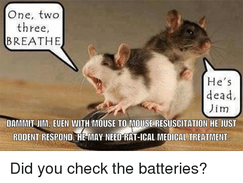 Dammits: One, two  three,  BREATHE  He's  dead  Jim  DAMMIT JIM, EUEN WITH MOUSE TO MOUSE RESUSCITATION HE JUST  RODENT RESPOND. HE MAY NEED RAT-ICAL MEDICAL TREATMENT Did you check the batteries?