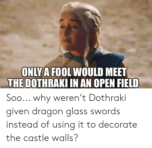 Dothraki, The Castle, and Castle: ONLY A FOOL WOULD MEET  THE DOTHRAKI IN AN OPEN FIELD  imgflip.com Soo... why weren't Dothraki given dragon glass swords instead of using it to decorate the castle walls?